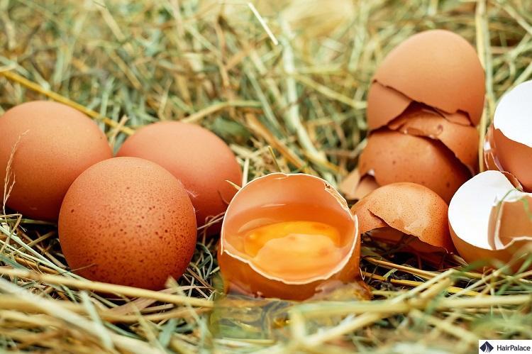 Eier sind gut für das Haarwachstum und können helfen, Haarausfall zu verhindern